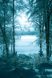 Winter picture of the foggy lake Stock Photo