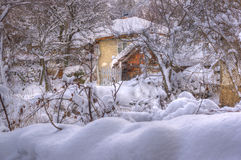 Winter picture - snowing royalty free stock photo