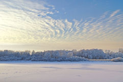 Winter picturesque landscape with trees and frosty river in the cold light fog at sunset Royalty Free Stock Photo