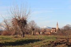 Winter in Piedmont Stockbild