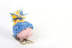Winter piggy bank with hat with pom-pom standing on skies of greenback hunderd dollars. On white background Royalty Free Stock Image