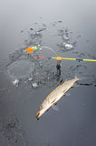 Winter pike fishing from ice Stock Images