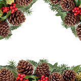 Winter Pine Cone and Floral Border Stock Image