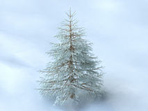 Winter Pine Tree On Snowy Background Royalty Free Stock Photos