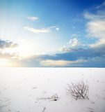 Winter plain Royalty Free Stock Photography