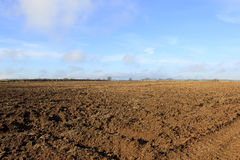 Winter plow soil and blue sky background Stock Image