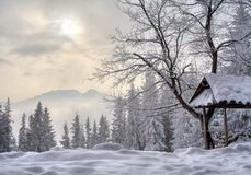 Winter in Poland. Snow winter in mountains in Poland Royalty Free Stock Photography