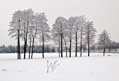Winter in Poland Stock Images