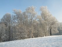 The winter in Poland Stock Photography