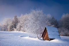 Winter in Poland Royalty Free Stock Photos
