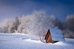 Winter in Polen Lizenzfreie Stockfotos