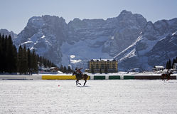 Winter polo cup. Cortina winter polo cup 2008- practice Royalty Free Stock Photos