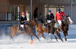 Winter polo match Royalty Free Stock Images