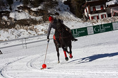 Winter polo player stock photo
