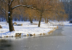 Winter pond Royalty Free Stock Photography