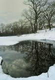 Winter pond Royalty Free Stock Images