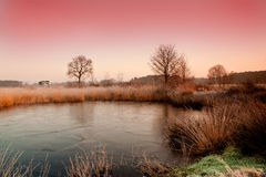 Winter pond at dawn Stock Photography