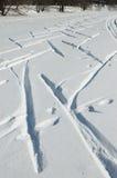 Winter pond in park. Ski tracks on pond ice in park royalty free stock photos