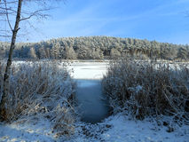 Winter pond. Sunny winter morning by pond Royalty Free Stock Photography