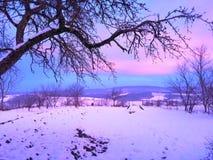 Winter& x27; por do sol crepuscular cor-de-rosa de s foto de stock