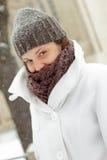 Winter portrait Stock Images