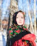 Russian winter Stock Photo
