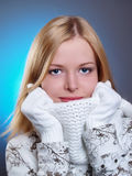 Winter portrait of a beautiful girl Royalty Free Stock Images