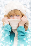 Winter portrait of a beautiful girl. In a hat and scarf stock photography