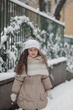 Winter portrait of a beautiful girl Stock Images