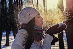 Winter portrait of beautiful girl. Stock Images