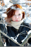 Winter portrait of a beautiful woman Stock Images