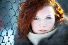 Winter portrait of a beautiful woman Royalty Free Stock Photography