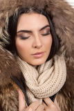 Winter portrait. Royalty Free Stock Photography