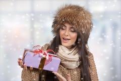 Winter portrait. Stock Images