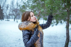 Winter portrait of beautiful young woman near pine tree Royalty Free Stock Image