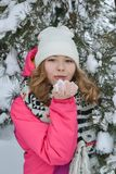 Winter portrait in fur-trees. Winter portrait in a Christmas tree girl snow forest stock image