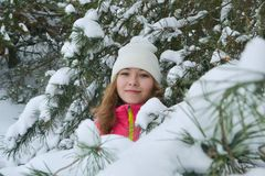 Winter portrait in fur-trees. Winter portrait in a Christmas tree girl snow forest stock photos