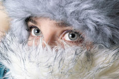 Winter portrait with furry accessories Stock Images