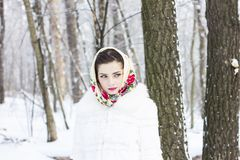 Winter portrait of a girl. C decoration Stock Image