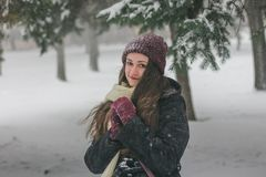 Winter portrait of a girl in the winter forest. Beautiful girl in a beautiful day winter snow park Royalty Free Stock Photos