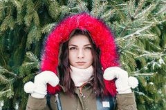 Winter portrait of a girl in front of a green Christmas tree.  Royalty Free Stock Photography