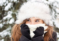 Winter portrait. Of a girl hiding in her scarf Royalty Free Stock Image