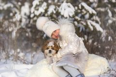 Little girl walks with her beloved puppy shih tzu. Winter portrait of a girl with a small dog of the Shih Tzu breed stock images