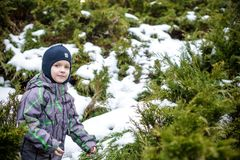 Winter portrait of kid boy in colorful clothes, outdoors during snowfall. Active outoors leisure with children in winter on cold s Royalty Free Stock Photo