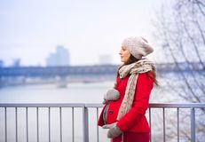 Winter Portrait Of Beautiful Pregnant Woman Royalty Free Stock Images