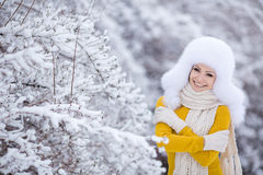 Winter portrait of a very beautiful woman Stock Photos