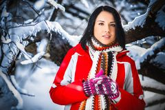 Winter portrait of woman Royalty Free Stock Photography