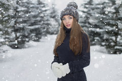 Winter portrait of young beautiful girl. Fashion photo royalty free stock photos