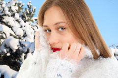 Winter portrait. Young, beautiful woman Stock Photos