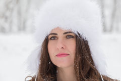 Winter portrait of a young woman. Portrait of a woman in winter Royalty Free Stock Images
